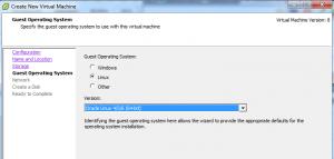 Membuat Virtual Machine dan Instalasi Guest OS Menggunakan vSphere Client4