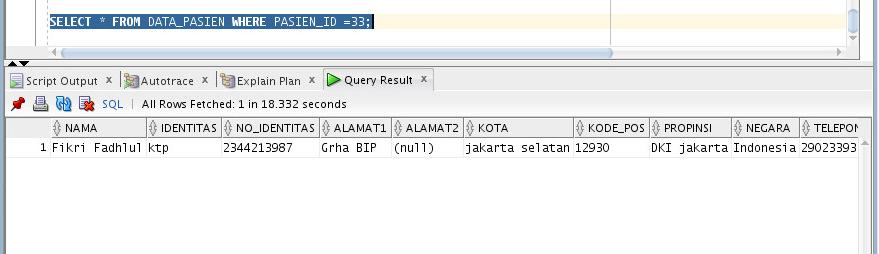 index-pada-database-inovasi-informatika-indonesia-2